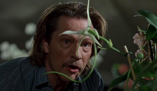 Adaptation. (2002) – Deep Focus Review – Movie Reviews, Critical Essays, and Film Analysis