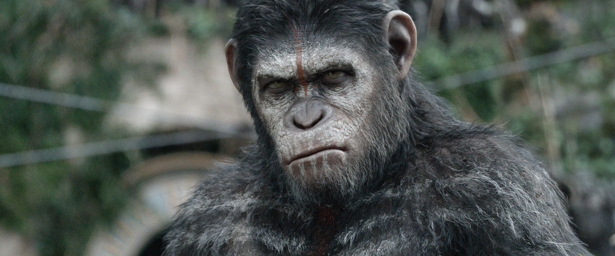 an analysis of the planet of the apes