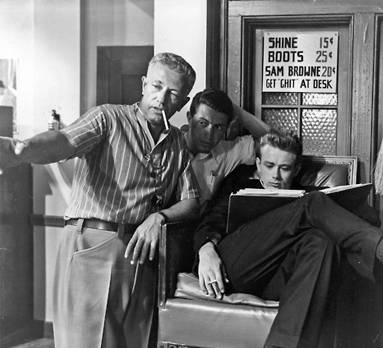 rebel without a cause essay Rebel without a cause how can a guy grow up in a place like that in his masterpiece rebel without a cause, director nicholas ray powerfully portrays the.