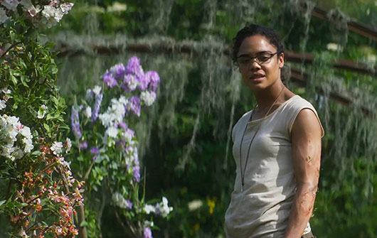 annihilation-still-2